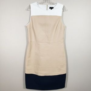 The Limited Color Block Career Dress Size 10